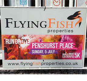 Flying Fish Properties